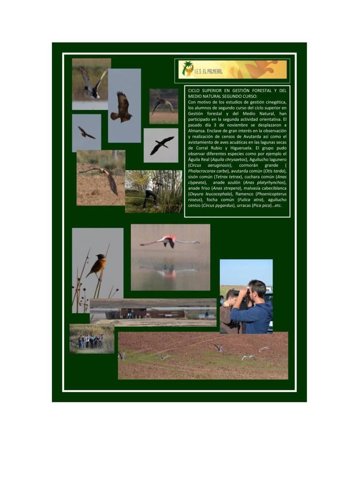 cartel-forestal-almansa1-pdf